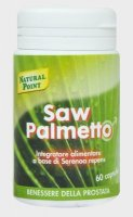 Saw Palmetto Serenoa Repens Sabal