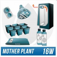 Mini Grow Kit for Mother Plant Maintenance